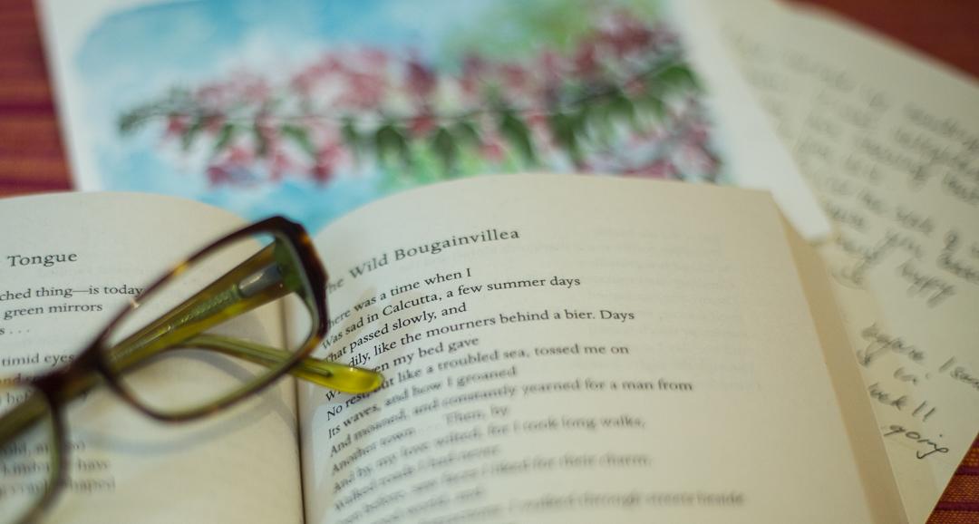 Book-and-bougainvillea